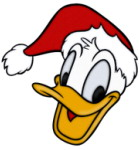 TN Donald Santa hat